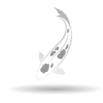 Hire a Cape Coral SEO Expert today. | The Silver Koi Fish